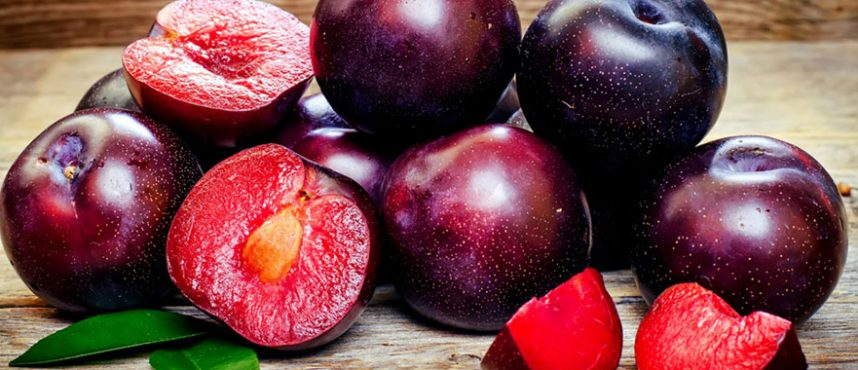 callas-red-plums-mask-858x370.jpg
